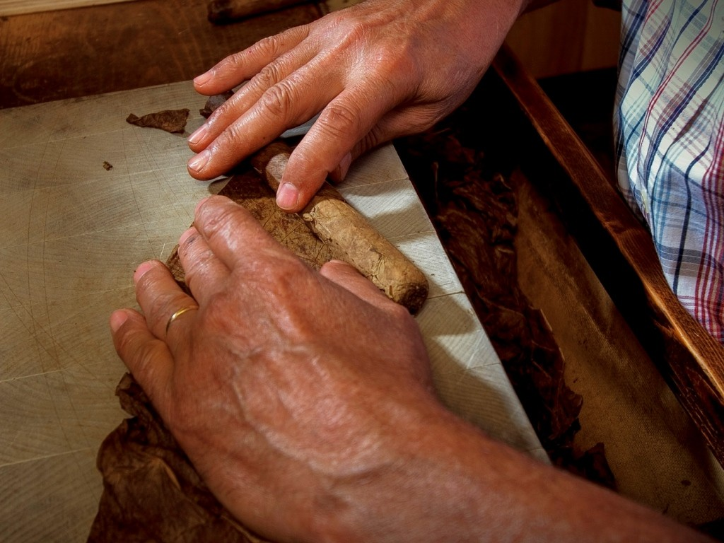 close up view of hands rolling a cigar