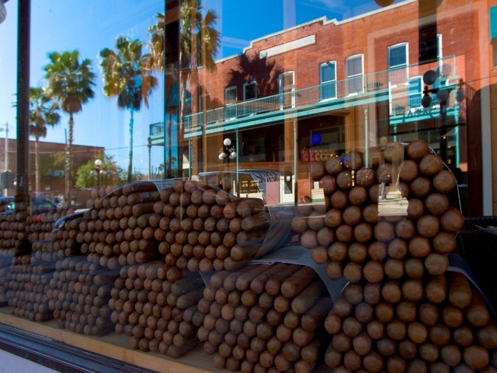 shop window displaying large bundles of cigars