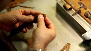 premium cigar roller in Ybor City Cigar Factory