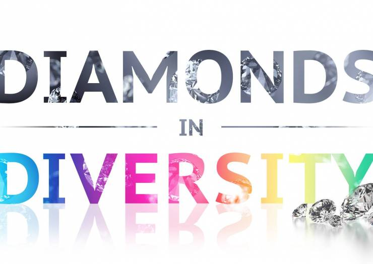 Diamonds in Diversity 2019- Tampa Bay Diversity Chamber of Commerce