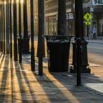 lamp posts filtering sunlight at dusk