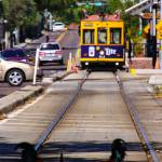 roosters on streetcar tracks in centro ybor